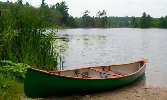 Canoe Rental In Wellston, Mi