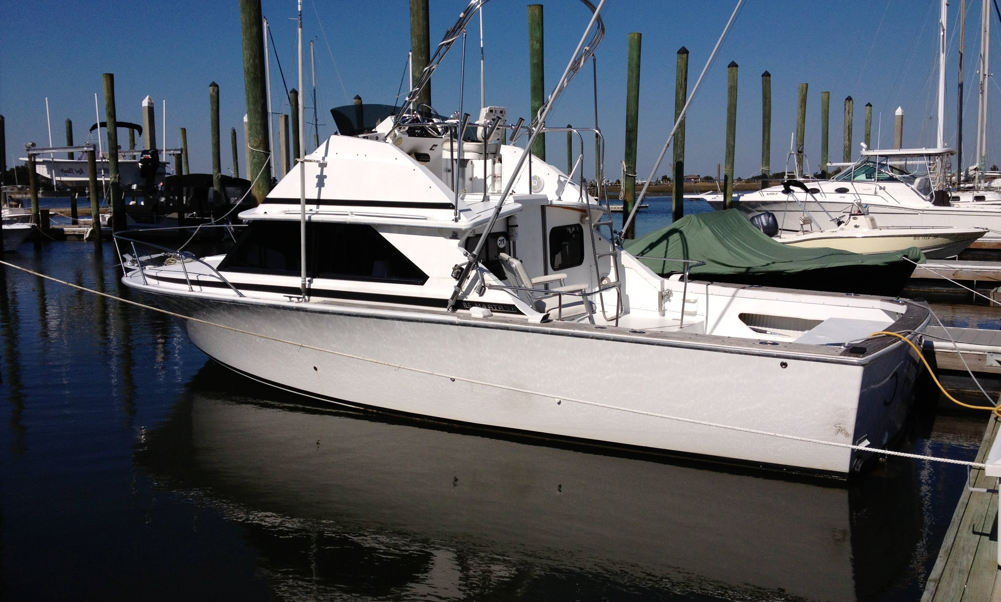 Inshore and Nearshore Fishing Charter in Isle of Palms, South Carolina