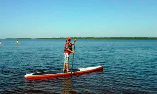 Paddleboard Rentals In Matlacha