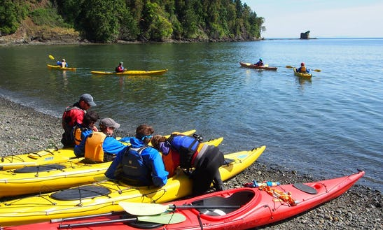 Sea Kayaking Tour To Rocky Cliff Shoreline Of Freshwater Bay From Port Angeles, Wa