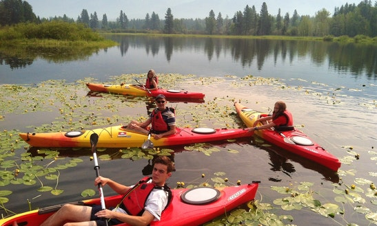 Rent A Single Kayak In Bigfork, Montana