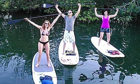 Paddleboard Rental In Tavernier