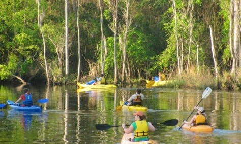 Paddle Out to Big Pottsberg Creek in Jacksonville, Florida