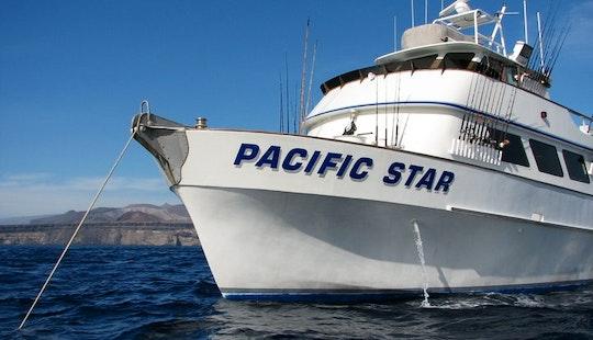 Enjoy 75' Pacific Star Sportfishing In San Diego