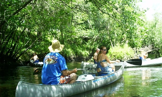 Canoe Rental In Wimauma