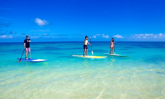 Paddleboard Rentals And Lessons, In Kailua, Hawaii