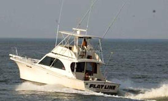 Sport Fishing Charter In Virginia Beach