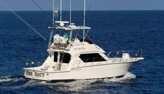 Fishing Charters On 43'
