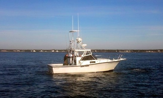 Custom Fishing Charters In South Hampton