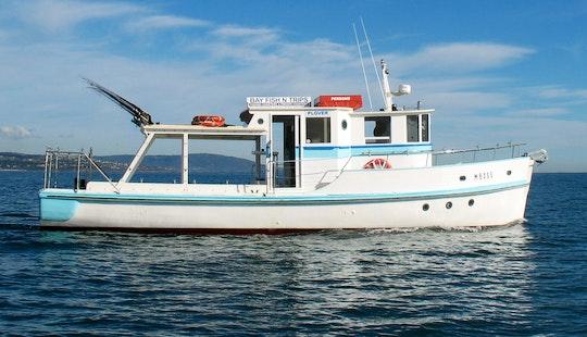 Charter Fishing Boat In Mornington, Victoria