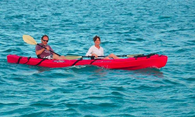 Guided Tour by a Kayak through the Mangroves in Turks and Caicos Islands