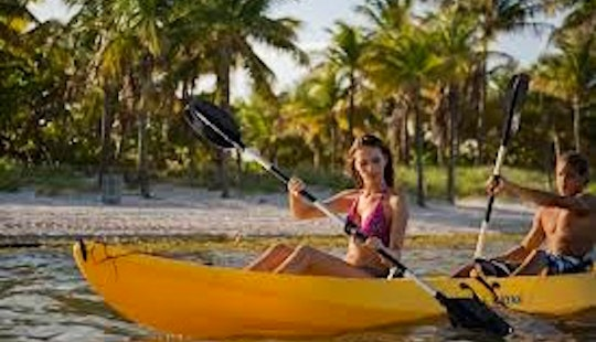 Explore The Best Of Key Biscayne, Florida On A Kayak!