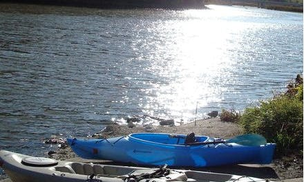Kayak Rental in Oronoco