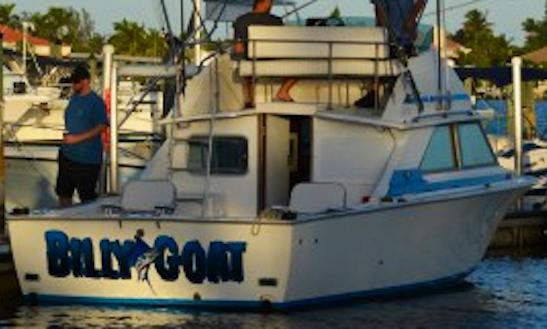 "28ft ""billy Goat"" Bertram Sportfisherman Boat Charter In Boynton Beach, Florida"
