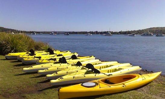 Kayak Hire At Cams Wharf
