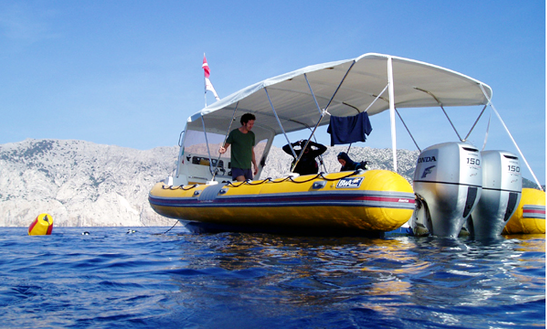 Dive Charters In Sardinia