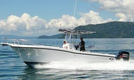 Coast Crawl Tour And Whale Watching Tour On 27' Dusky Boat In Costa Rica