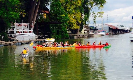 Kayak Canoe And Stand Up Paddleboard Rental In Ithaca