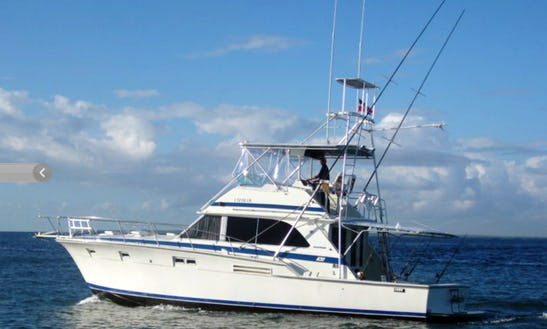 Go Fishing On This 46'