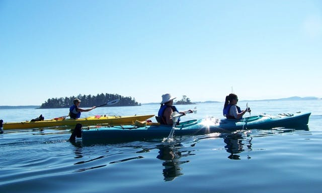 Kayak Tours, Rentals, and Lessons in Sidney BC