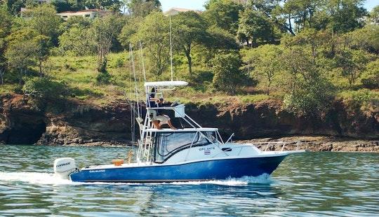 Sportfishing Trips & Tours On
