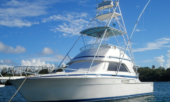 Bertram Convertible 37 Sport Fisherman In Tobago, Black Rock
