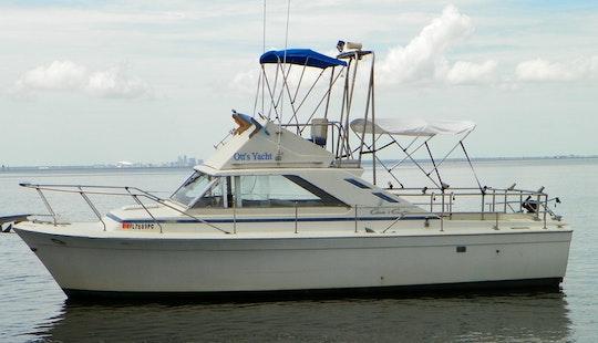 31ft Chris Craft Commander Sportfisherman Charter In Bradenton Beach, Florida