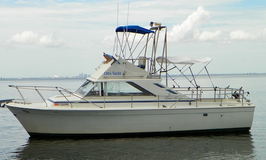 31ft Chris Craft Commander Sportfisherman Charter In Bradenton Beach, Florida