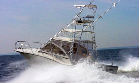 Cuddy Cabin Fishing Charter In Jaco, 33'