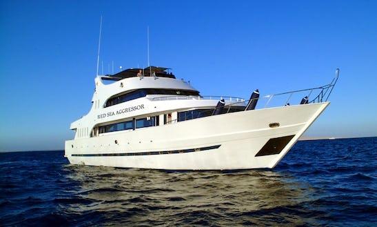 Charter Sea World Dive Boat Fleet In Muang