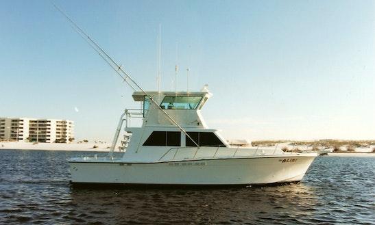 Sport Fisherman Charter In Destin
