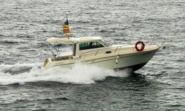 Ramfel Sport Fishing Barcelona