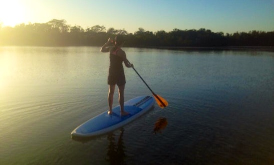Stand Up Paddle Board Hire In Australia, Palm Beach
