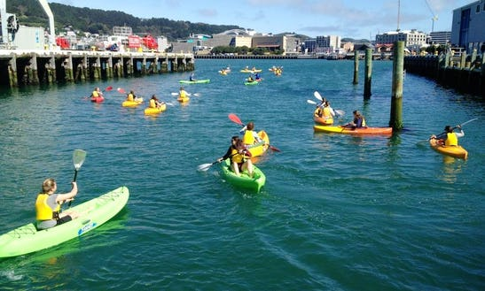 Kayaks, Sups For Hire, Lessons, Tours, And More In Wellington