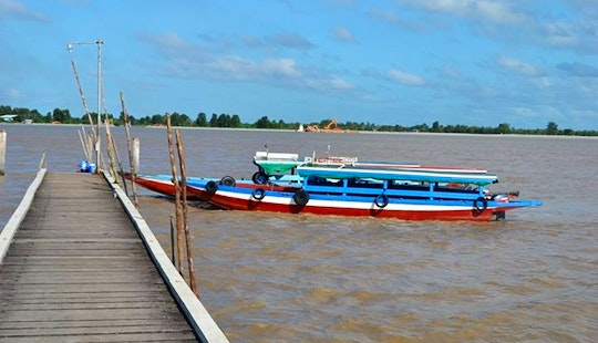 3 Hours Magical Encounters On Dolphins And Beach Tour In Paramaribo, Suriname