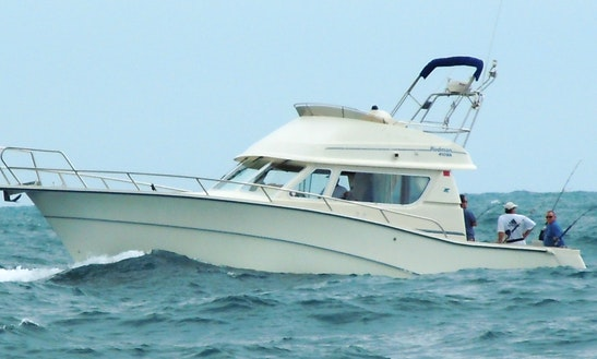 43ft Rodman Sport Fisherman Charter In Ocean Isle Beach, North Carolina