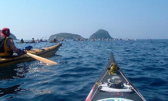 Kayak Rental In Italy, Marciana Marina