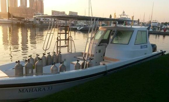 Diving Charter In Abu Dhabi