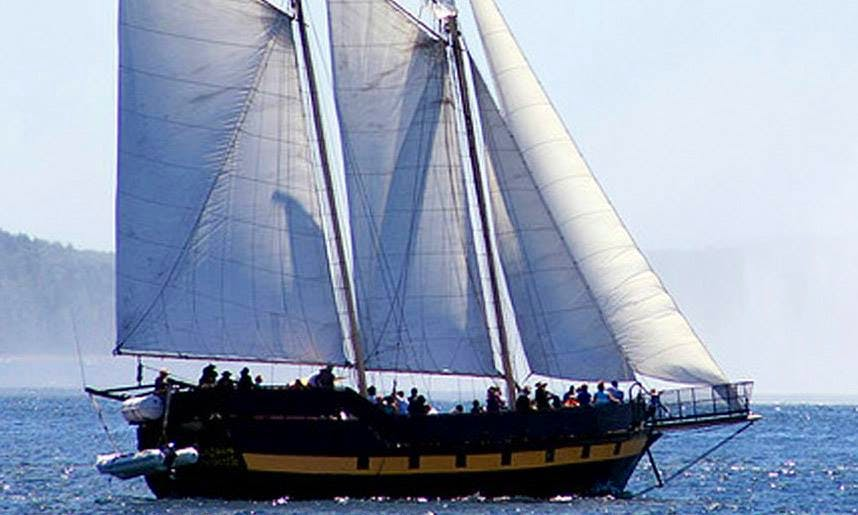 """Pirate Ship Charter on """"Liana's Ransom"""" across the Great Lakes, Quebec City, & Charlottetown"""