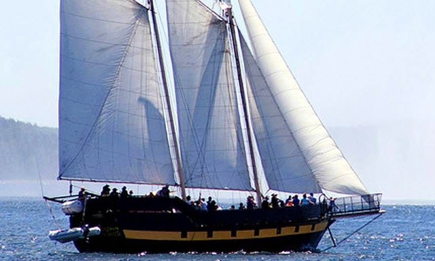 "Pirate Ship Charter on ""Liana's Ransom"" across the Great Lakes, Quebec City, & Charlottetown"