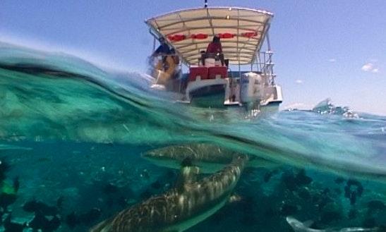 Snorkel Adventure Tour