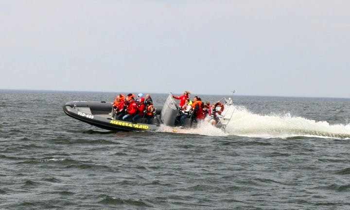 12 Seater Ridas 36 Inflatable Boat in Estonia, Tallinn