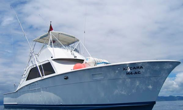 Portugal 36' Fishing Charter in Horta