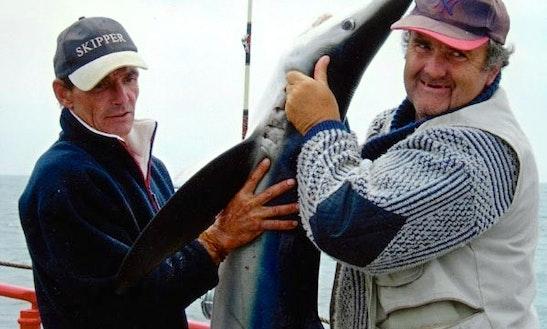 Shark Fishing Week In Portugal
