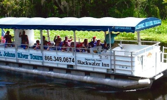 St. Johns River Tour On 'mv Neptune Star' Boat In Astor, Florida