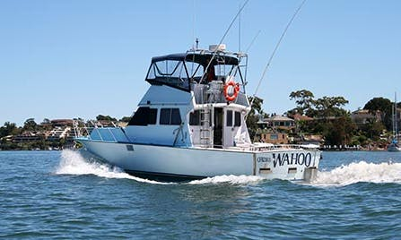 39' Sportfishing Yacht for 10 People in Merrylands