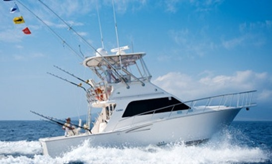 Fishing Charter On 35ft Sportfisher Yacht In Lahaina, Hawaii
