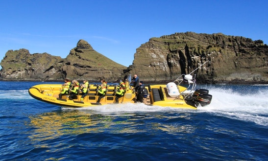 Hire A Rib For 25 Persons In Vestmannaeyjabær, Iceland