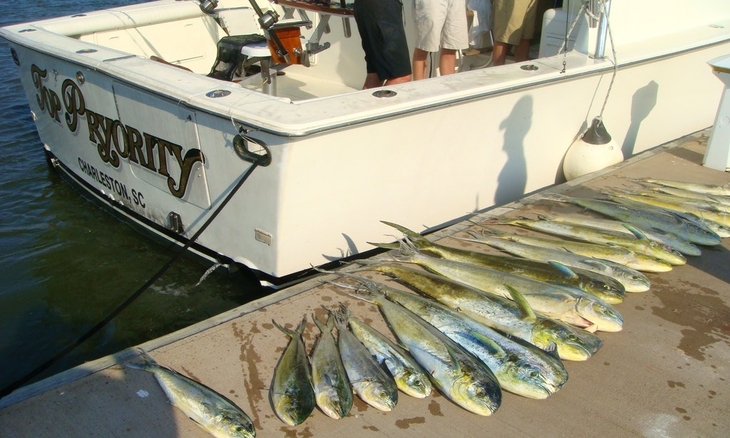 Fishing charter on 48ft top priority luxury yacht in for Deep sea fishing charleston sc