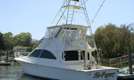 Fishing Charter On 48ft